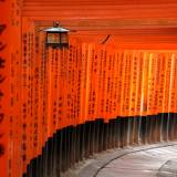 viaggio organizzato in giappone santuario di fushimi inari taisha kyoto