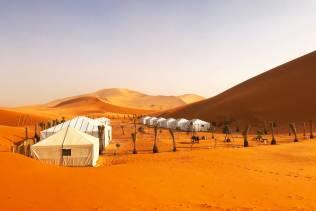 Campo tendato nel deserto