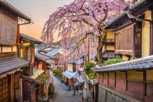 Giappone: viaggio di gruppo alla scoperta del Giappone.