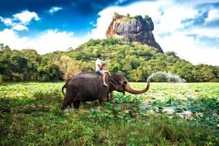 Viaggio organizzato alla scoperta dello Sri Lanka.