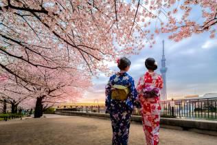 Giappone: Viaggio organizzato alla scoperta del Giappone.