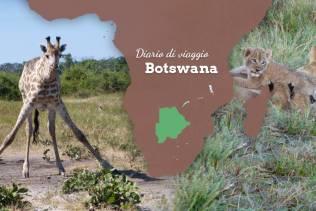Diario di viaggio Botswana.