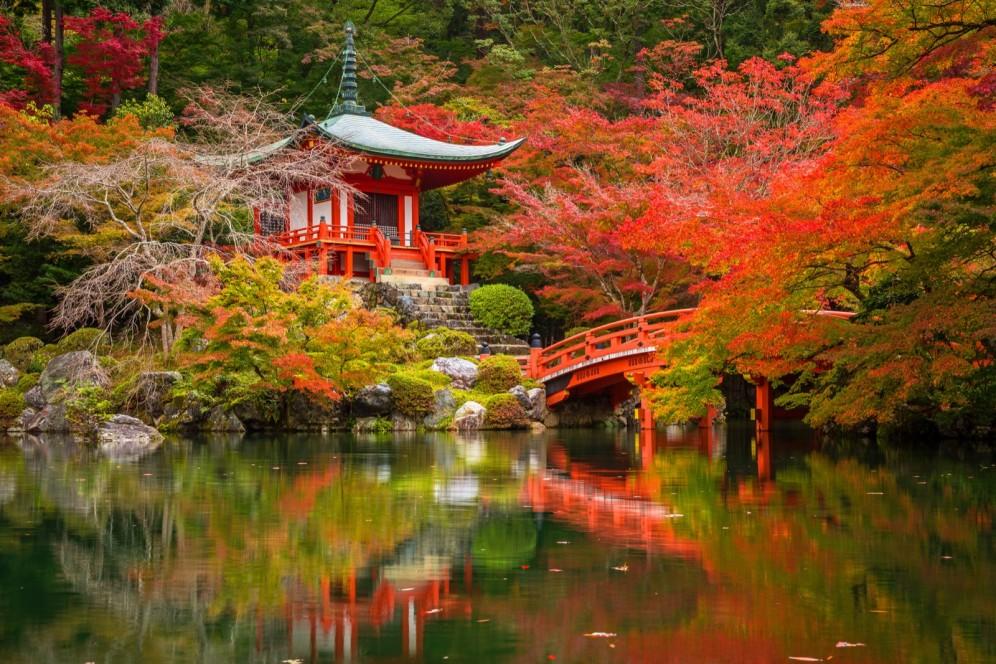Giappone - giardino giapponese a Kyoto
