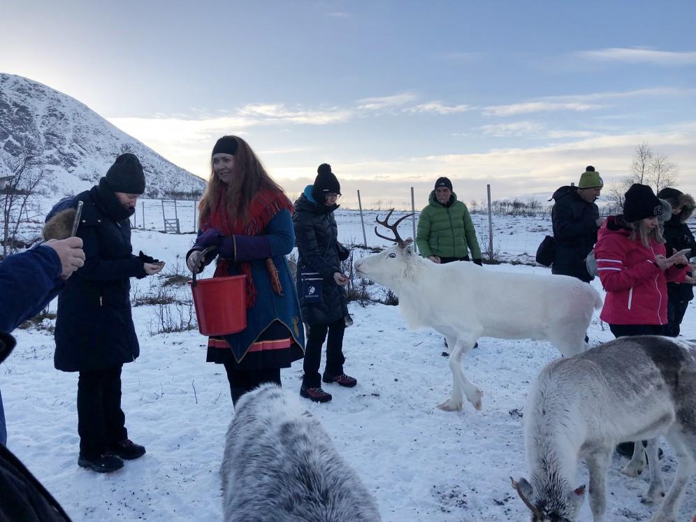 viaggio di gruppo per vedere l'aurora boreale