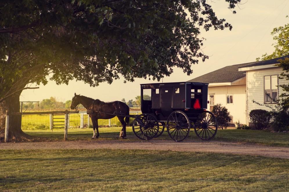 Viaggi organizzati Stati Uniti e Canada - Contea Amish