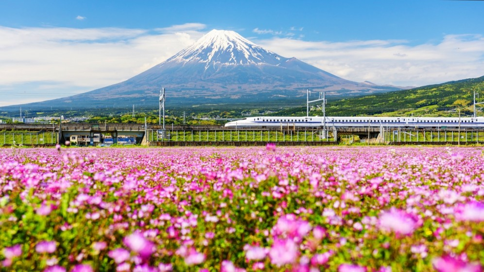 Viaggio di gruppo in Giappone - Monte Fuji